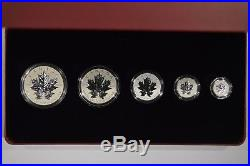 2013 Canada Silver Maple Leaf Fractional 5 Coin Set 25th Anniversary 120674