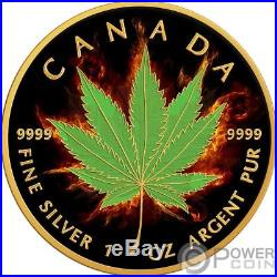 INDICA Maple Leaf Burning Marijuana 1 Oz Silver Coin 5$ Canada 2017