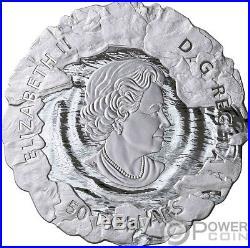 POLAR BEARS Mother and Cub 5 Oz Silver Coin 50$ Canada 2019